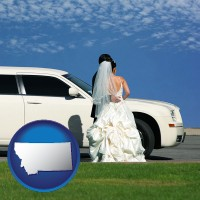 montana map icon and a white wedding limousine